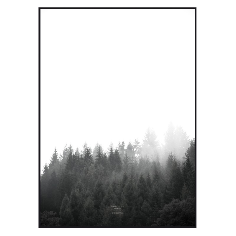 na.hili walk through the FOREST - A1 Artprint - Poster