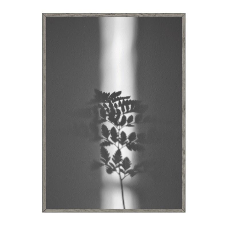 na.hili ray of sunlight Artprint A1 Poster