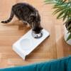 DINE - Katzenfutterstation