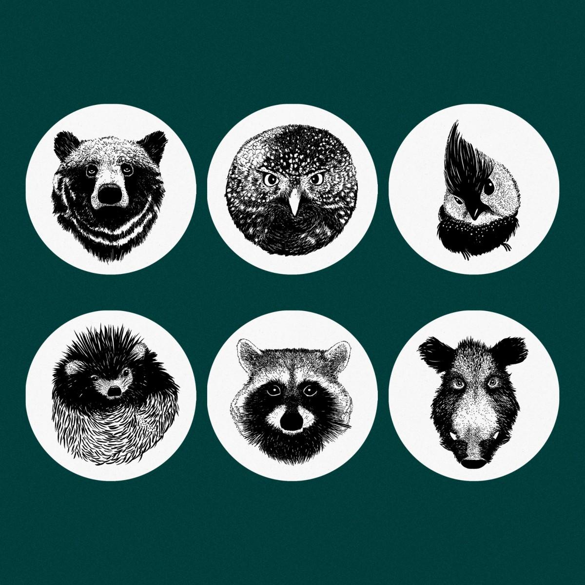 """6er-Set Untersetzer """"Forest Animals"""" mit Aufbewahrungsbox"""