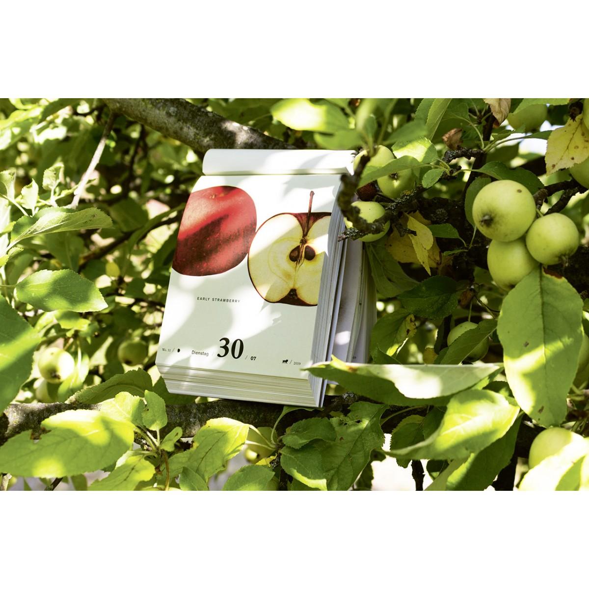 Jochen Rädeker - An Apple a Day 2019 - 365 alte Apfelsorten