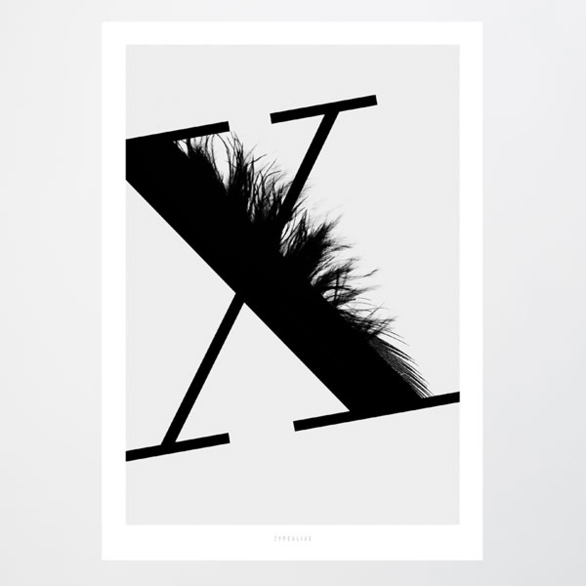 typealive / ABC Flying Letters - X