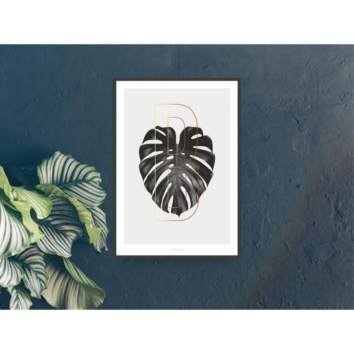 typealive / ABC Plants - B