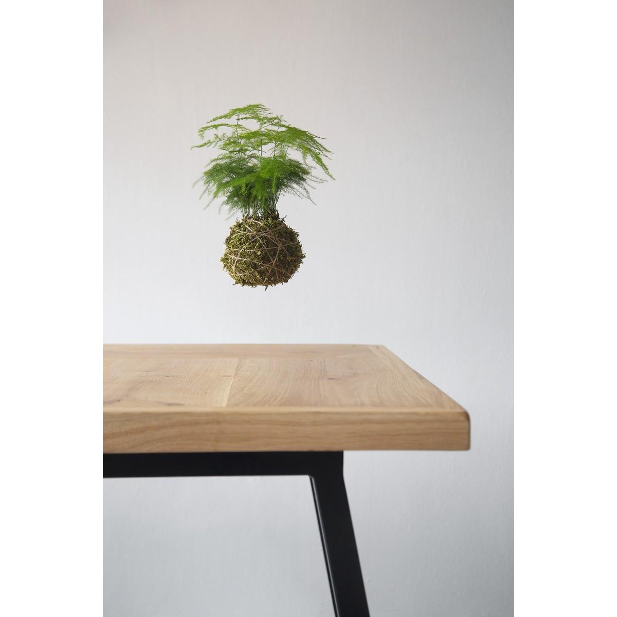 Esstisch aus Altholz Eiche Vrolijk/Aleida 220x100cm schwarz