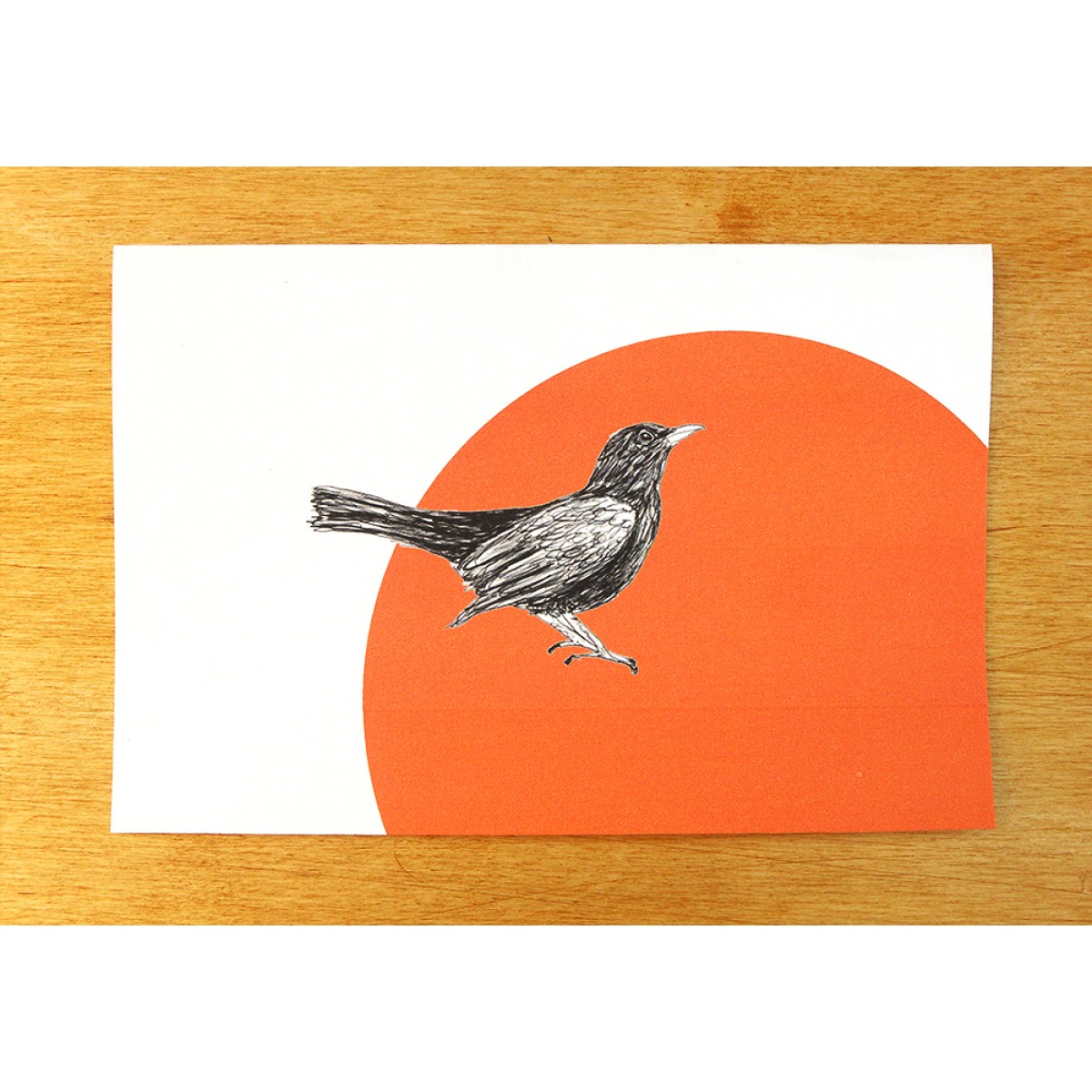 "Postkarten ""Amsel"""