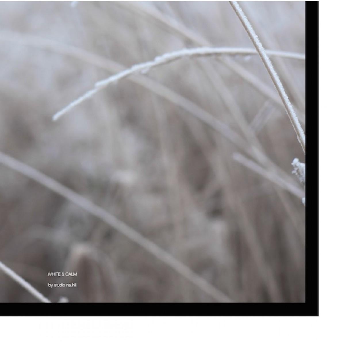 nahili white & calm Artprint - A3, A1 or 50x70  - Poster Gräser