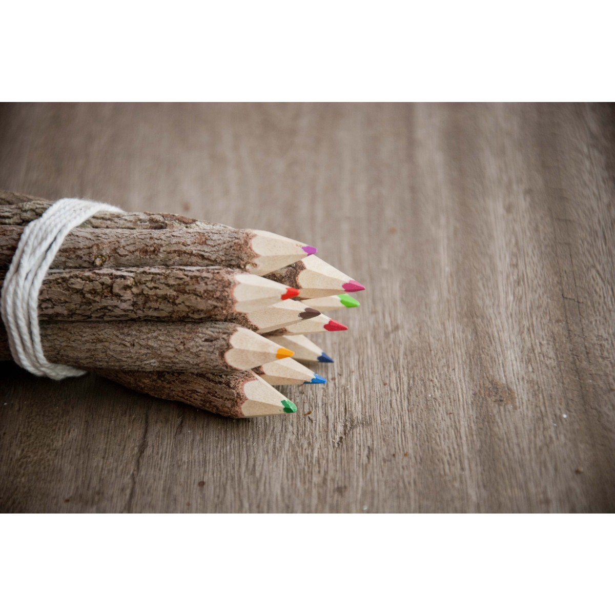 Buntstifte-Set aus Ästen, handgearbeitet
