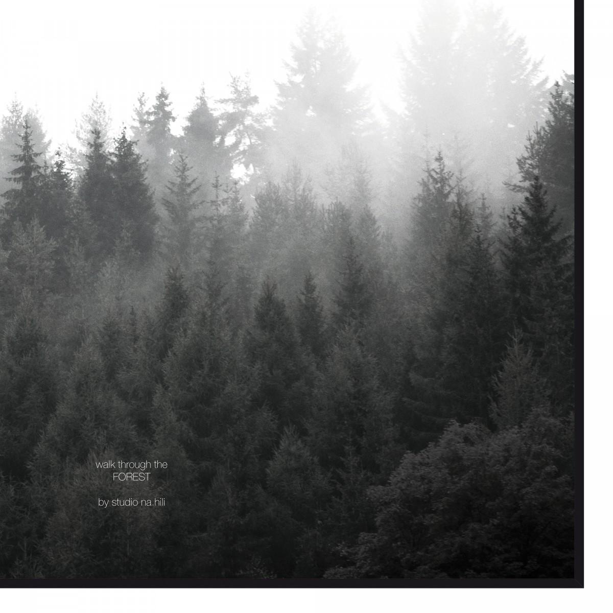 walk through the FOREST - A3 Artprint - Poster