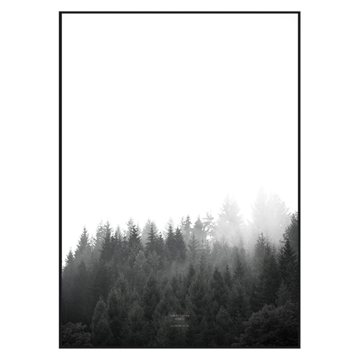 """nahili ARTPRINT/POSTER """"walk through the FOREST"""" (DIN A1/A3 & 50x70cm) Wald Natur-Fotografie"""
