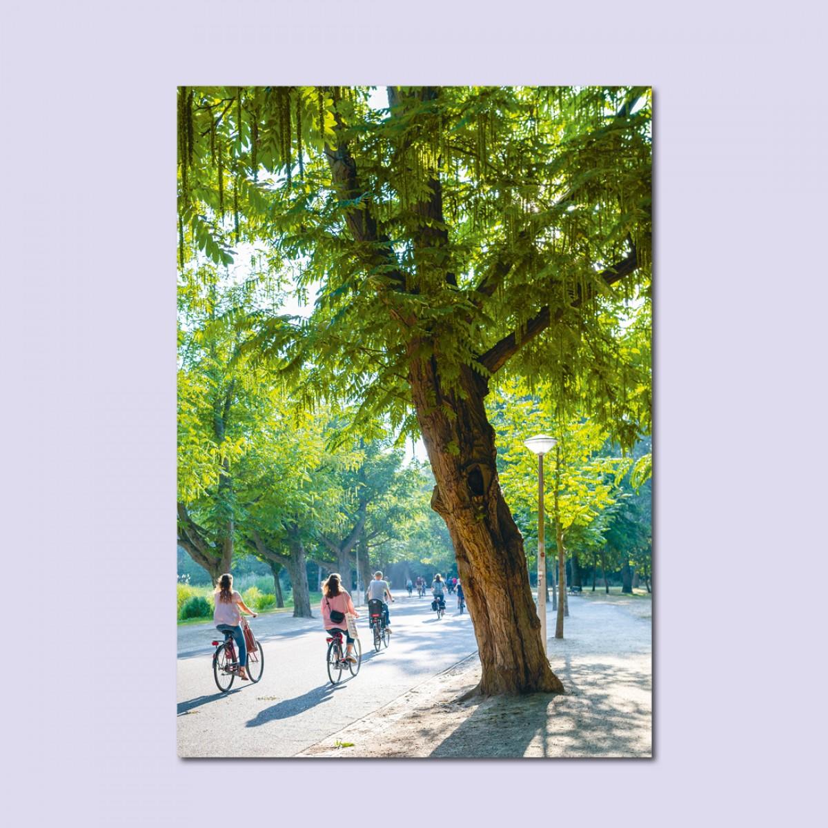 'Fietsen Amsterdam' limitierter Fotodruck auf Naturpapier, DIN A2, klimaneutral gedruckt / Ankerwechsel Verlag