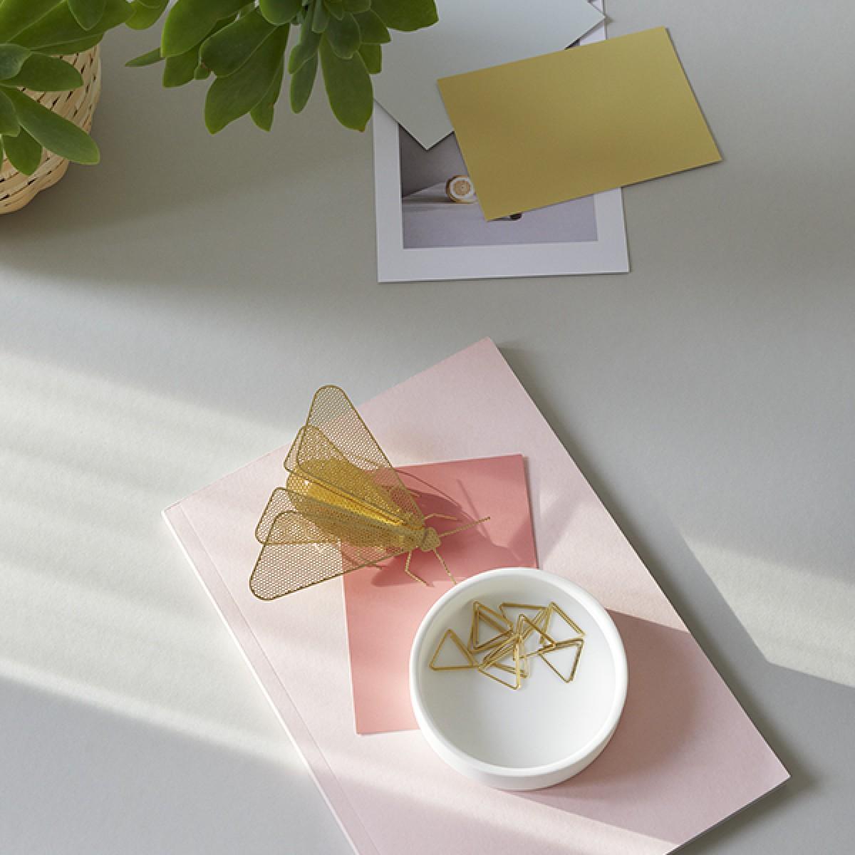MITBEWOHNER Motte