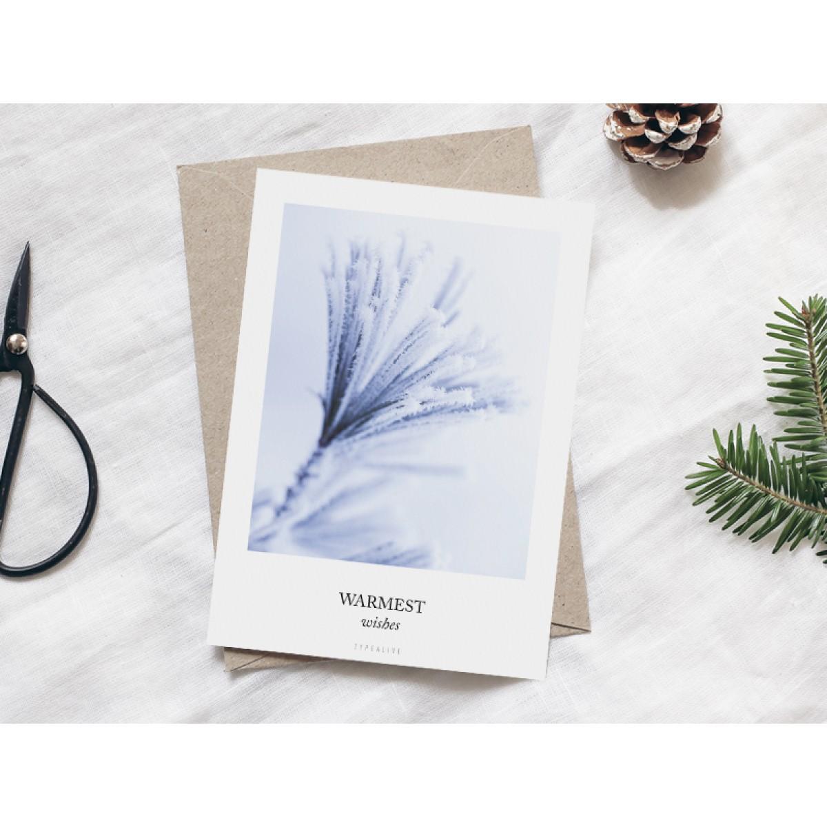typealive / Weihnachtskarten 4er Set / Frozen Plants