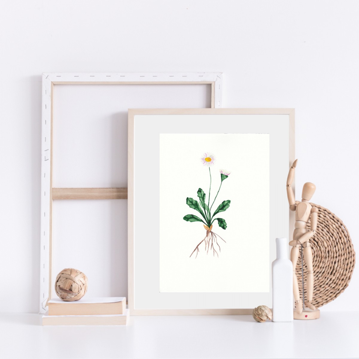 "nathys_illustration ""daisy"""