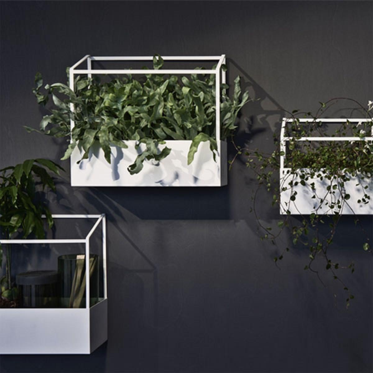 Studio Joa Herrenknecht GREENHOUSE - Pflanzen-/Kräuteraufbewahrung (klein/weiß)