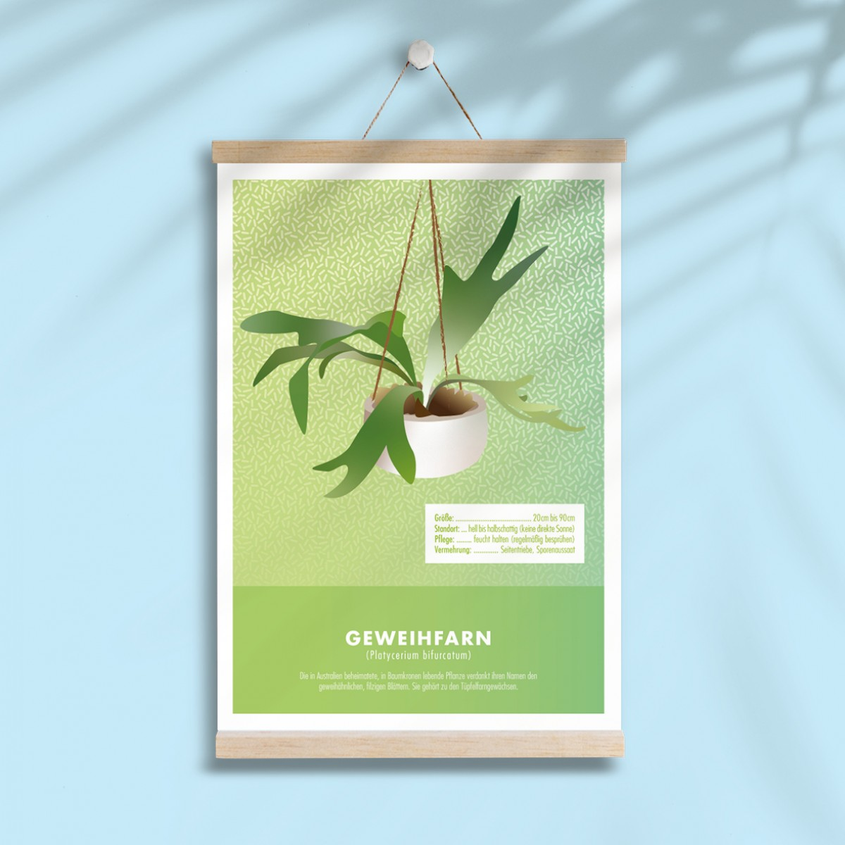 """Hey Urban Monkey - A4 Poster - """"Geweihfarn"""""""