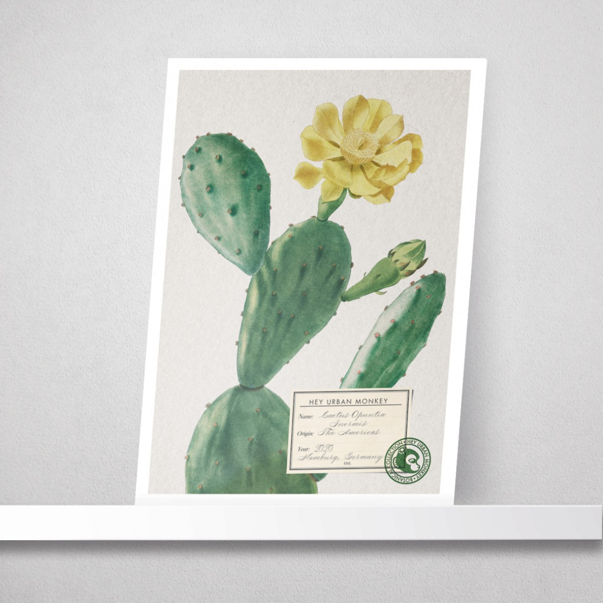 "Hey Urban Monkey - A4 Poster - ""Cactus Opuntia Inermis"""