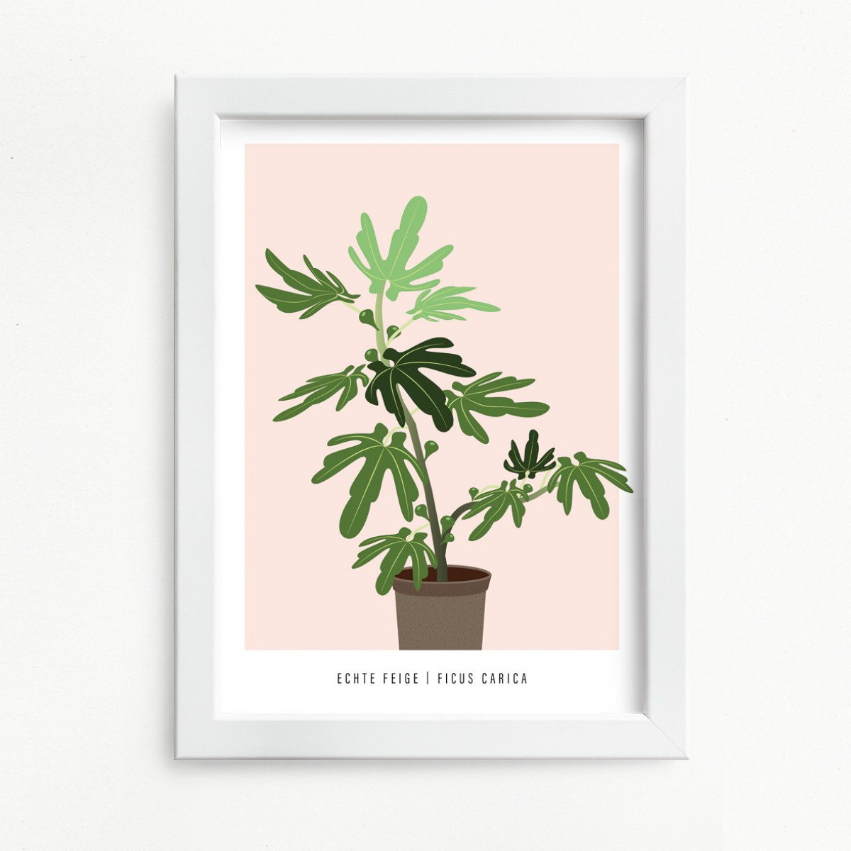 "Hey Urban Monkey - A4 Poster - ""Feige"""
