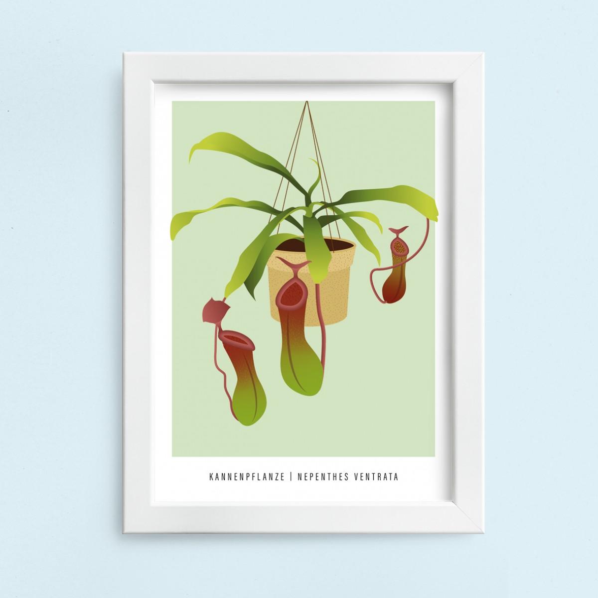 "Hey Urban Monkey - A4 Poster - ""Kannenpflanze"""