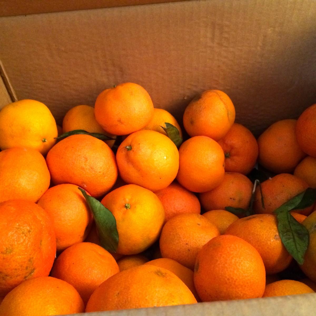 orginelles OrangenÖl 250ml