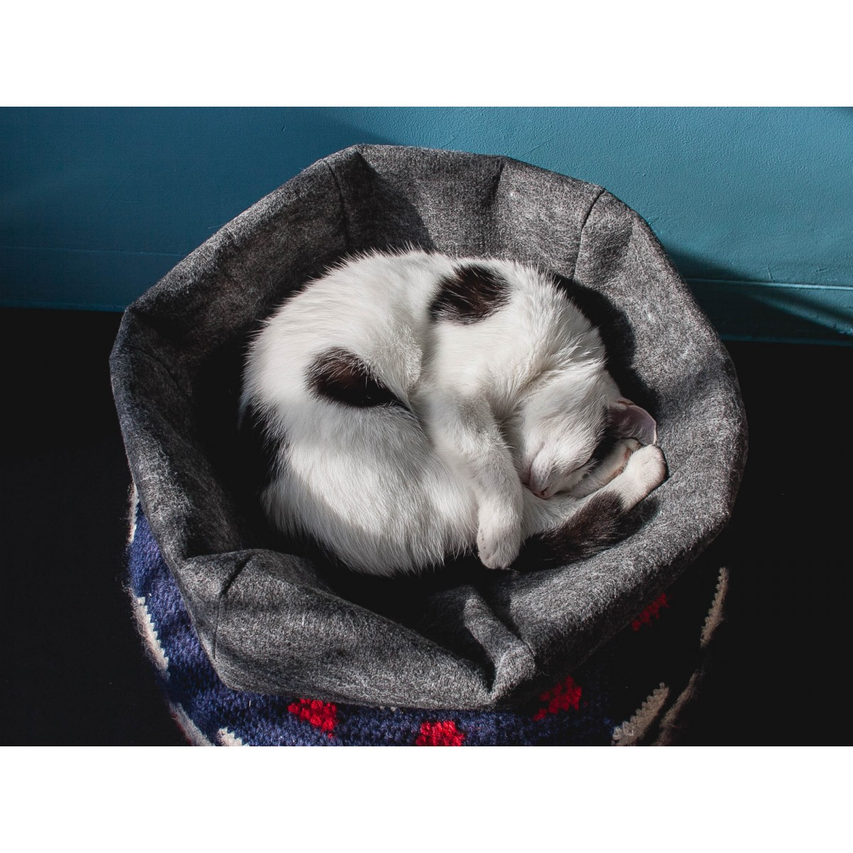 Katzenkugel Upcycling 2 in 1 gemütliche Katzenhöhle und Katzenkorb aus Nadelfilz