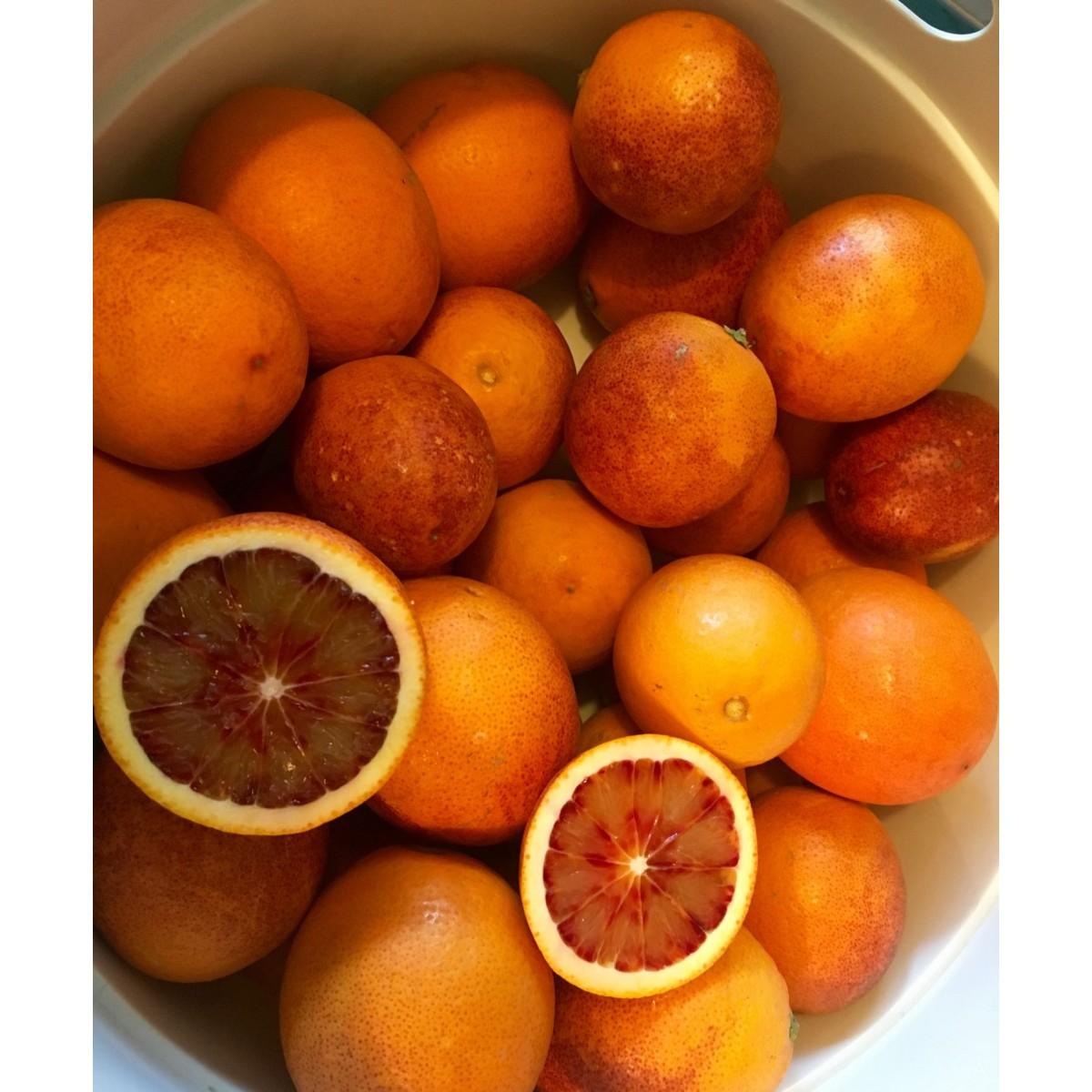 Gabys Grüner Garten originelles Orangen Set  1040g