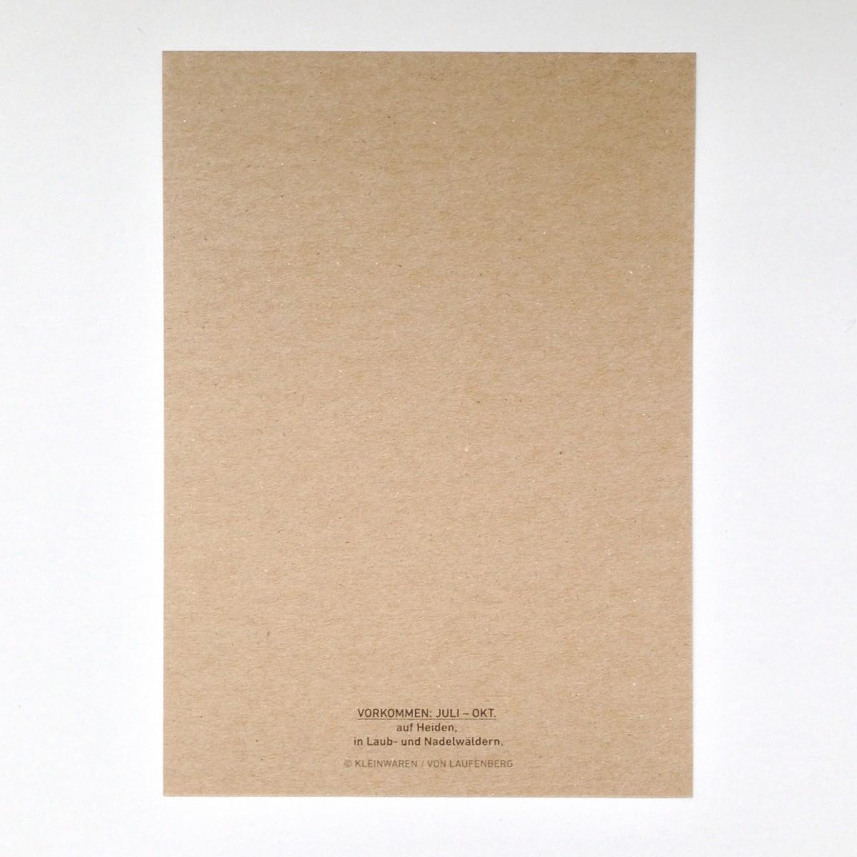 KLEINWAREN / VON LAUFENBERG Parasolpilz Postkarte