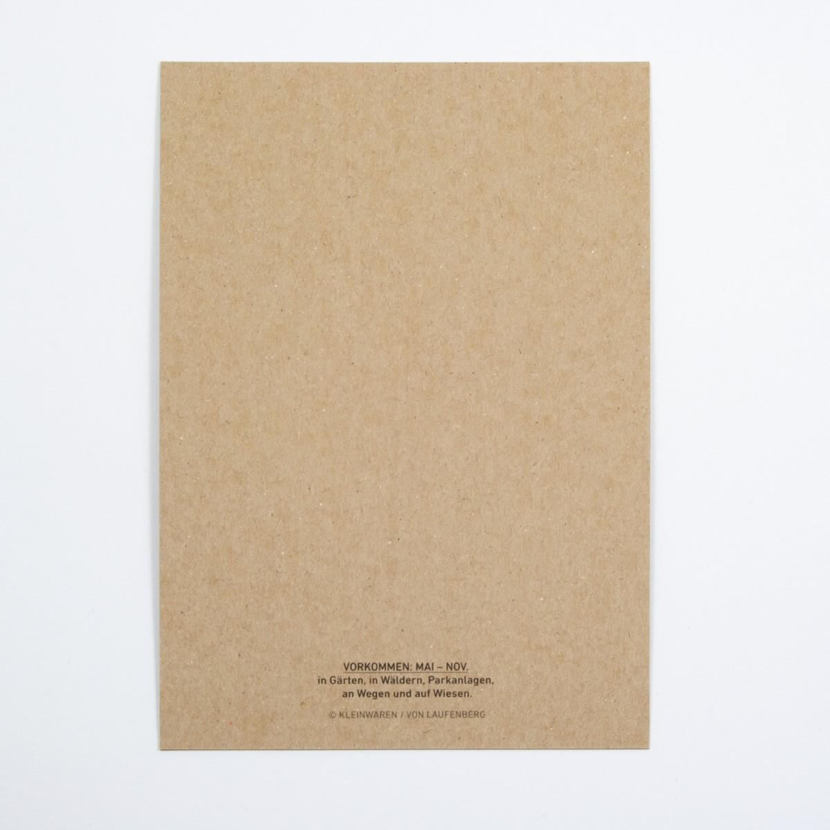 KLEINWAREN / VON LAUFENBERG Schopf-Tintling Postkarte