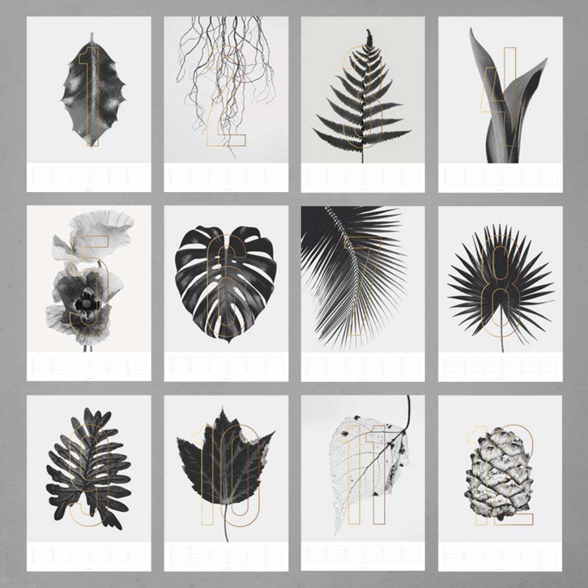 typealive / Wandkalender Plants