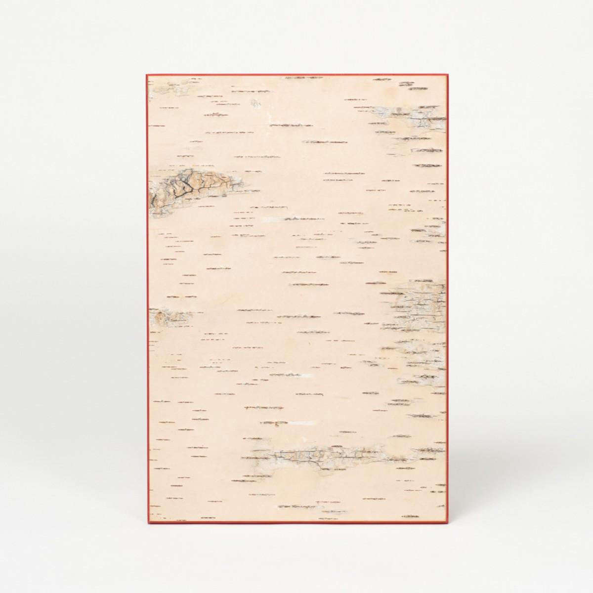 MOYA Wandbild aus geschälter Birkenrinde - KLEIN - Birken Wandpaneele