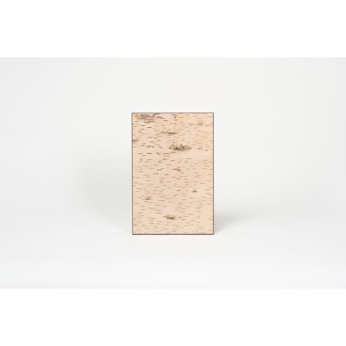 Wandbild aus geschälter Birkenrinde - KLEIN - Birken Wandpaneele