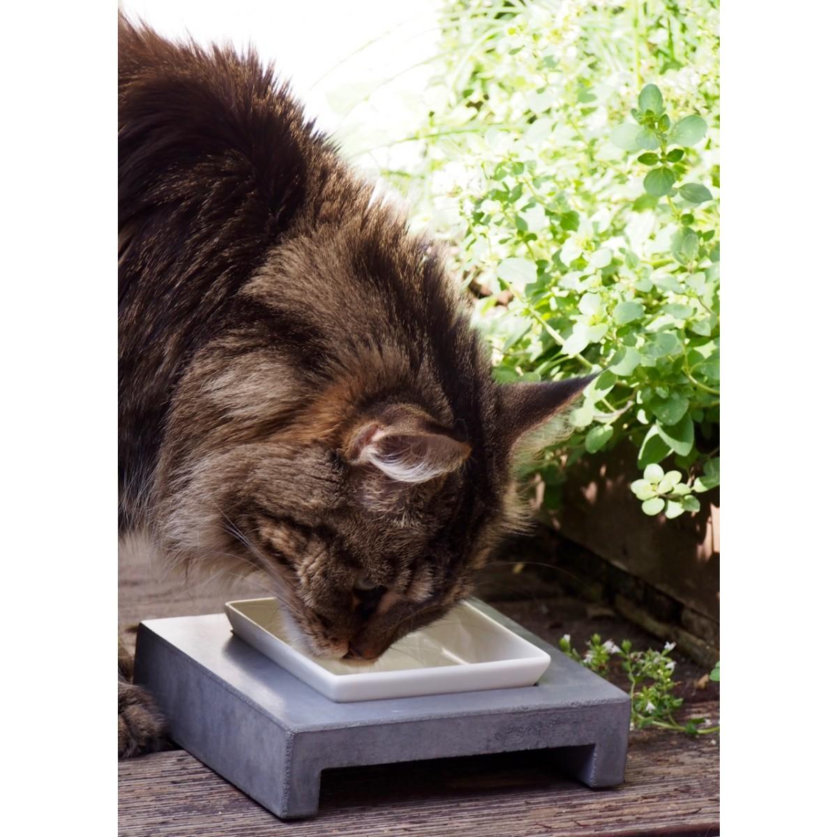 Ersatzschale Set Katzennapf MauMauz Ovisproducts