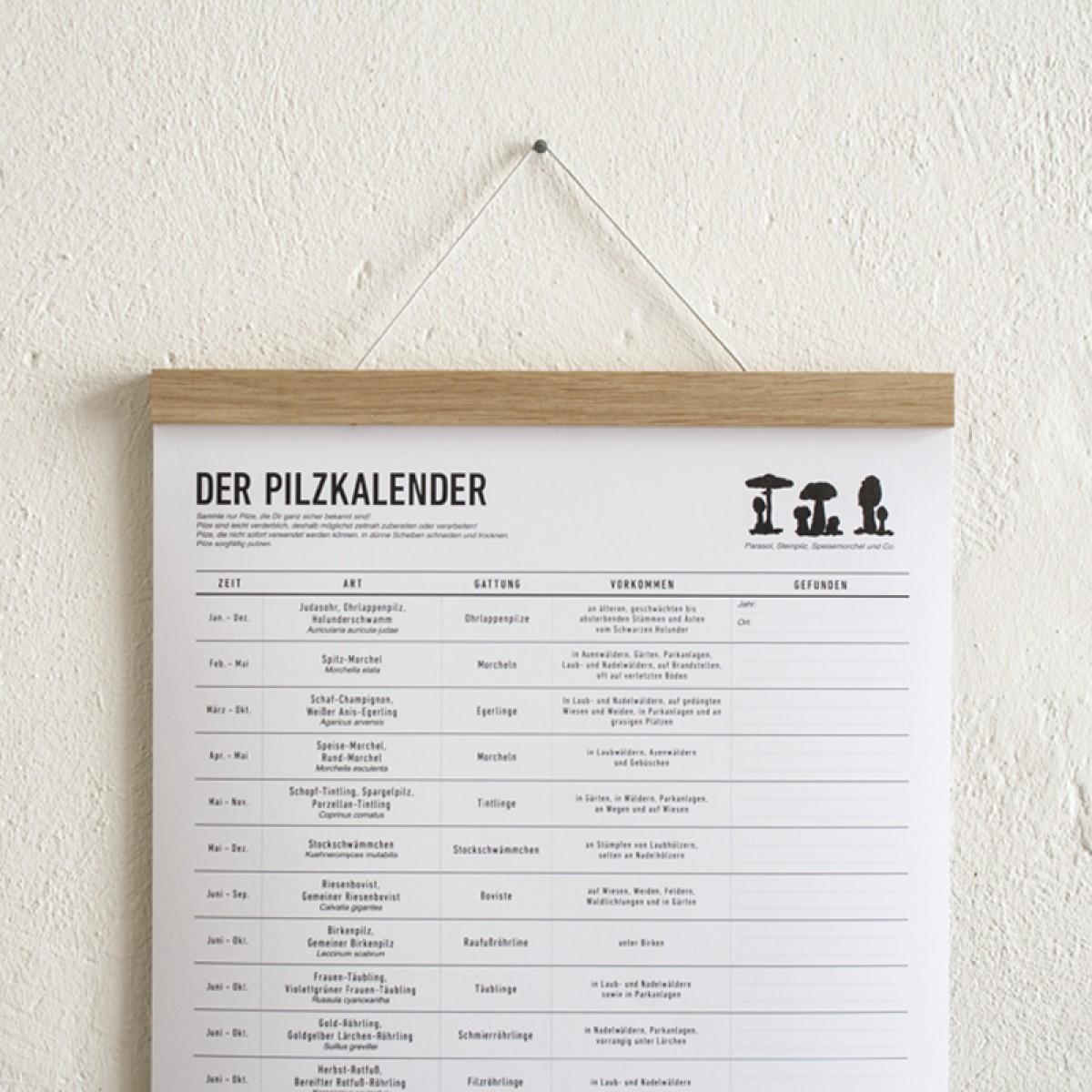 PILZ SAMMLER SET 01