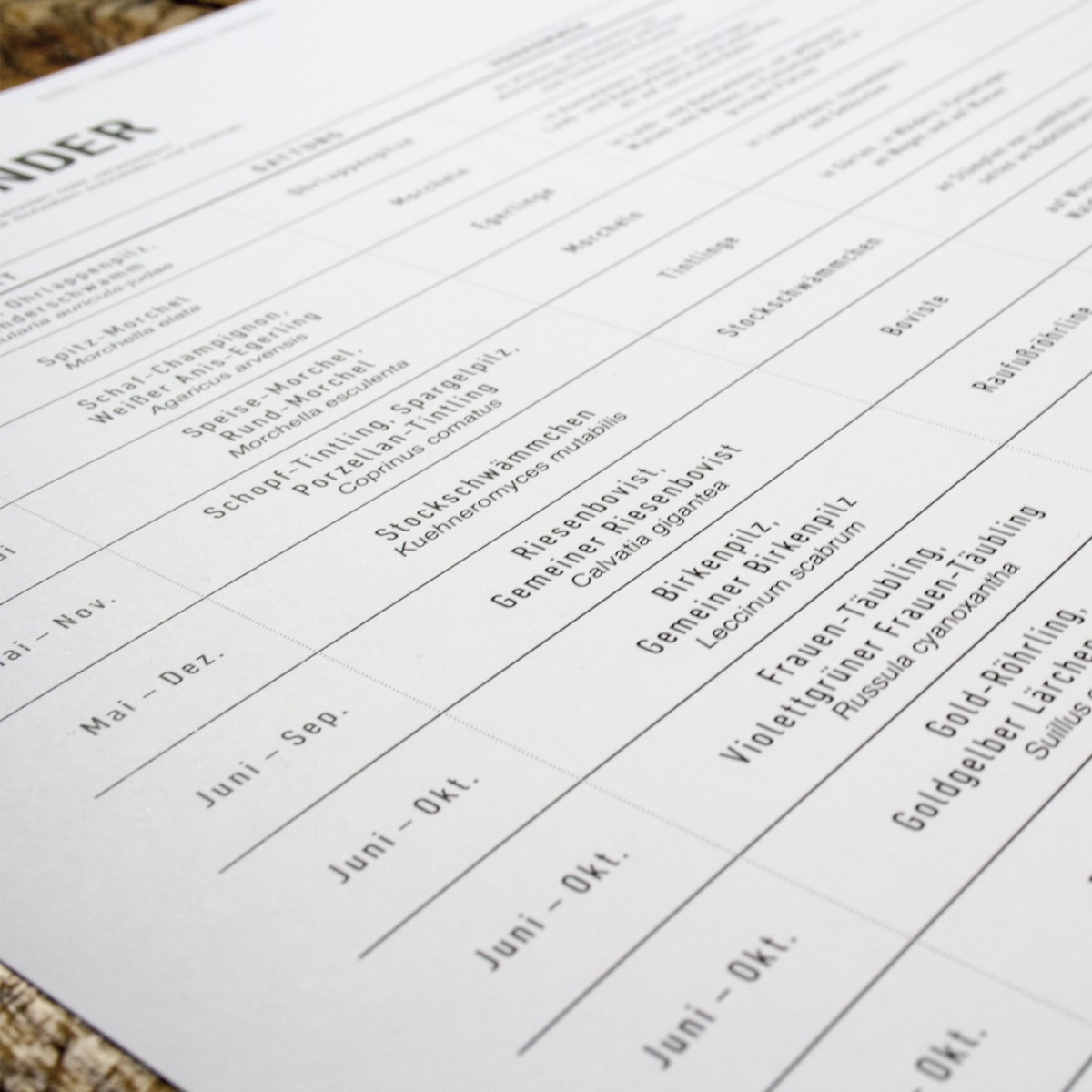 KLEINWAREN / VON LAUFENBERG Der Pilzkalender