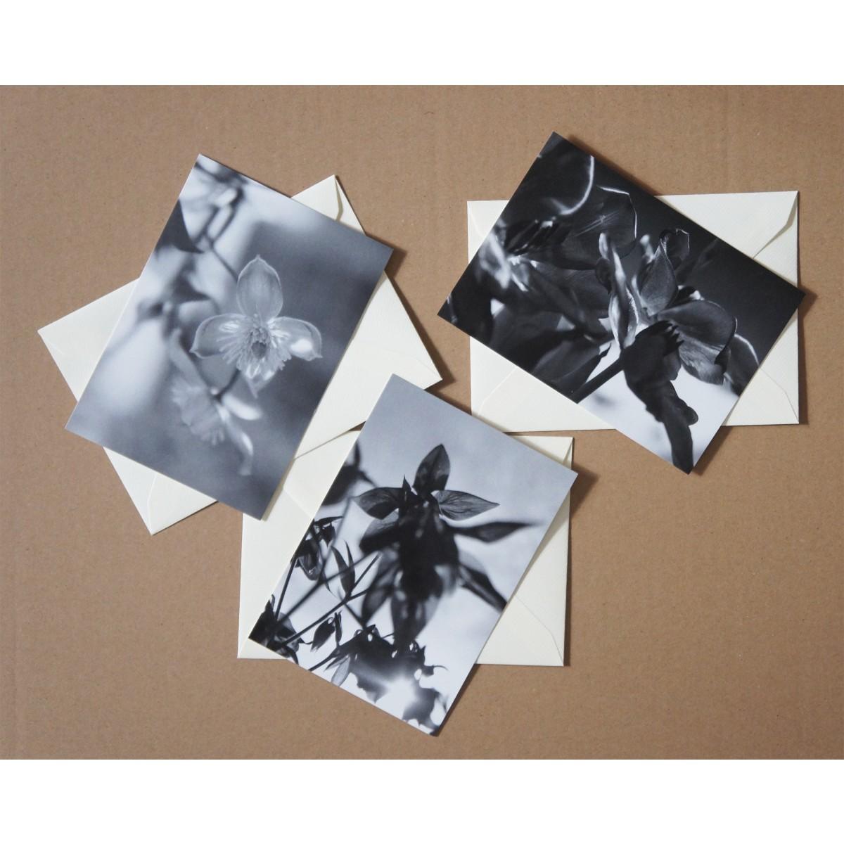 Anna-Katharina Ledwa Postcards Black And White