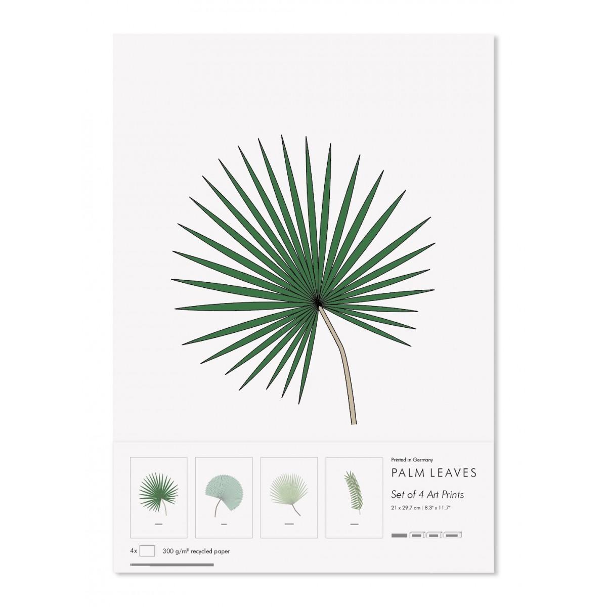 FINE FINE STUFF - Palmen - Poster - Posterset - Palmen