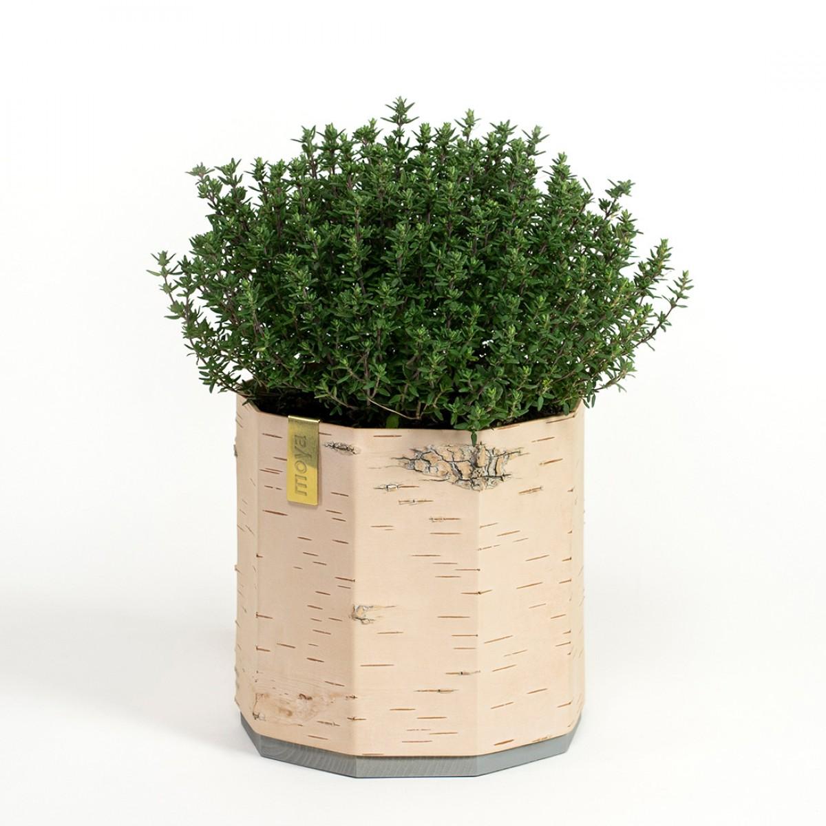 MOYA Blumentopf  / Übertopf aus Birkenrinde für Kräuter und Pflanzen - TARA Klein