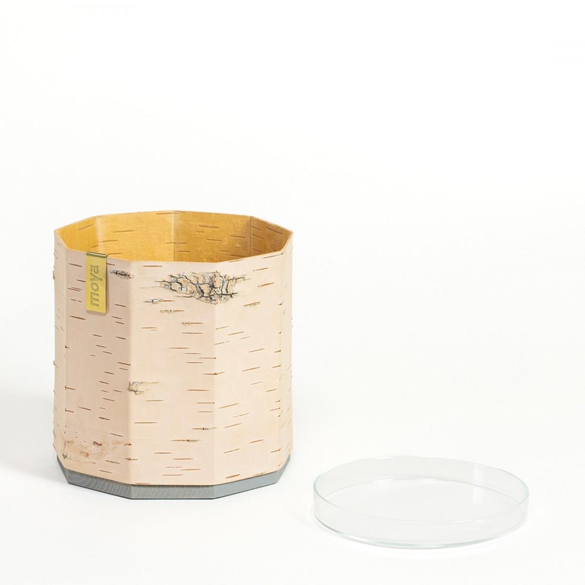 Blumentopf  / Übertopf aus Birkenrinde für Kräuter und Pflanzen - TARA Klein