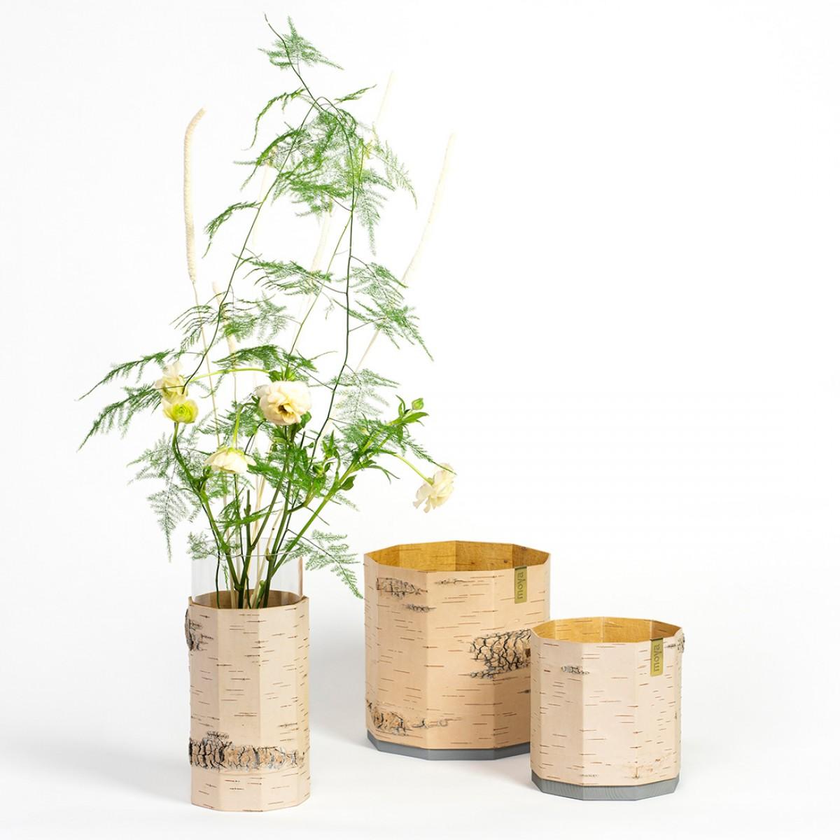 Pflanztopf / Blumentopf / Übertopf für Pflanzen und Kräuter aus Birkenrinde - TARA Groß