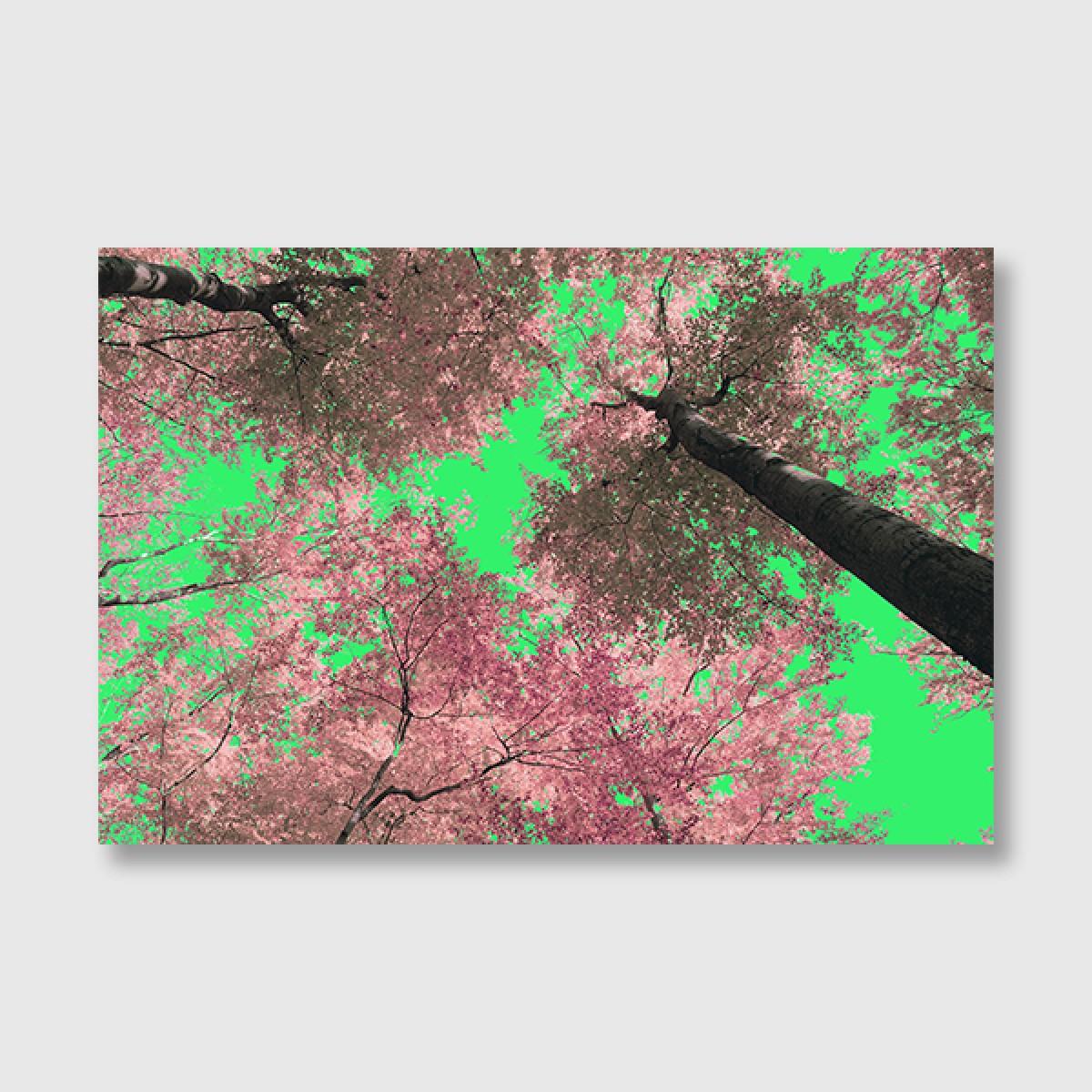 """ZEITLOOPS """"Trees in love"""", Posterprint 40x60 cm"""