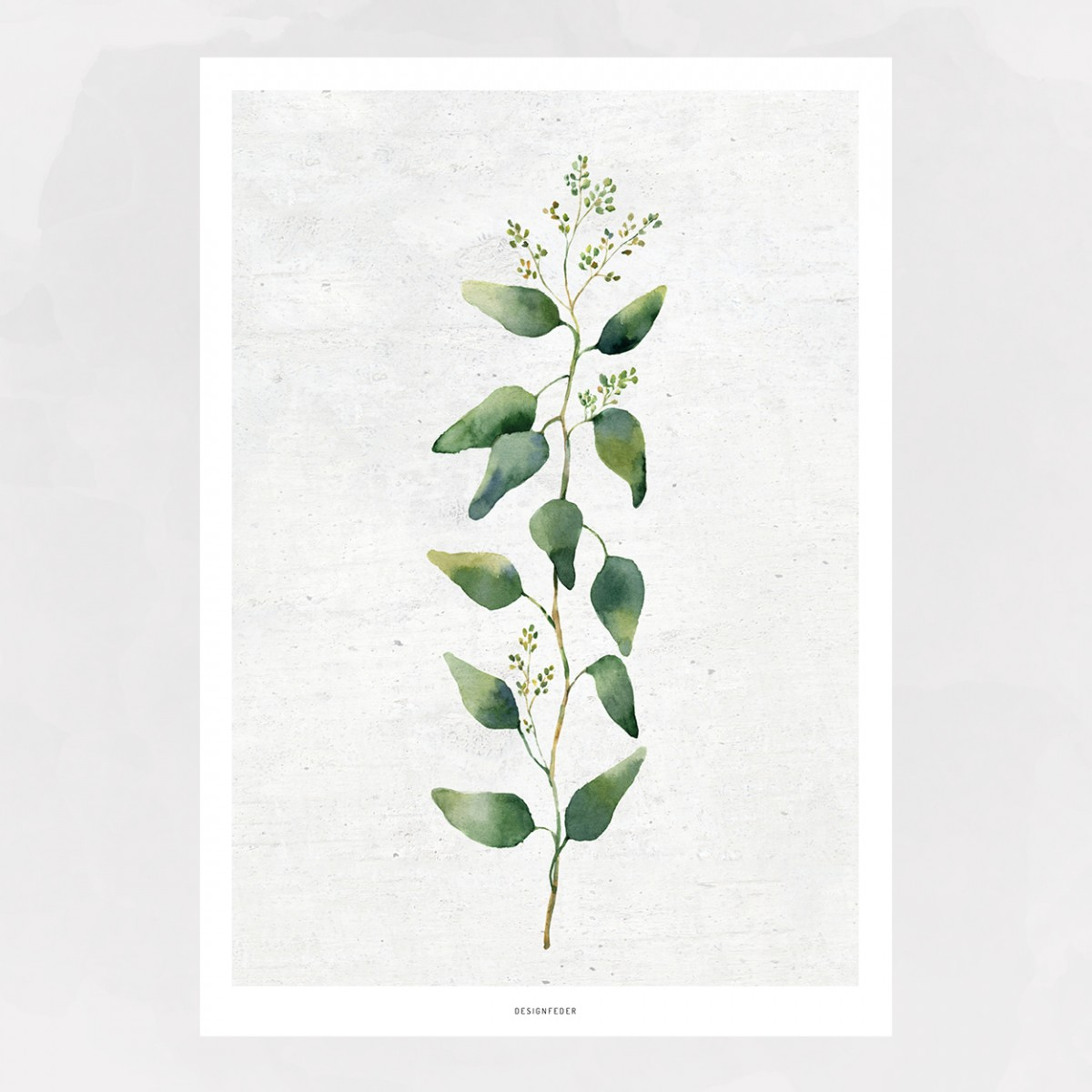 designfeder | Poster Pflanze No.1+2