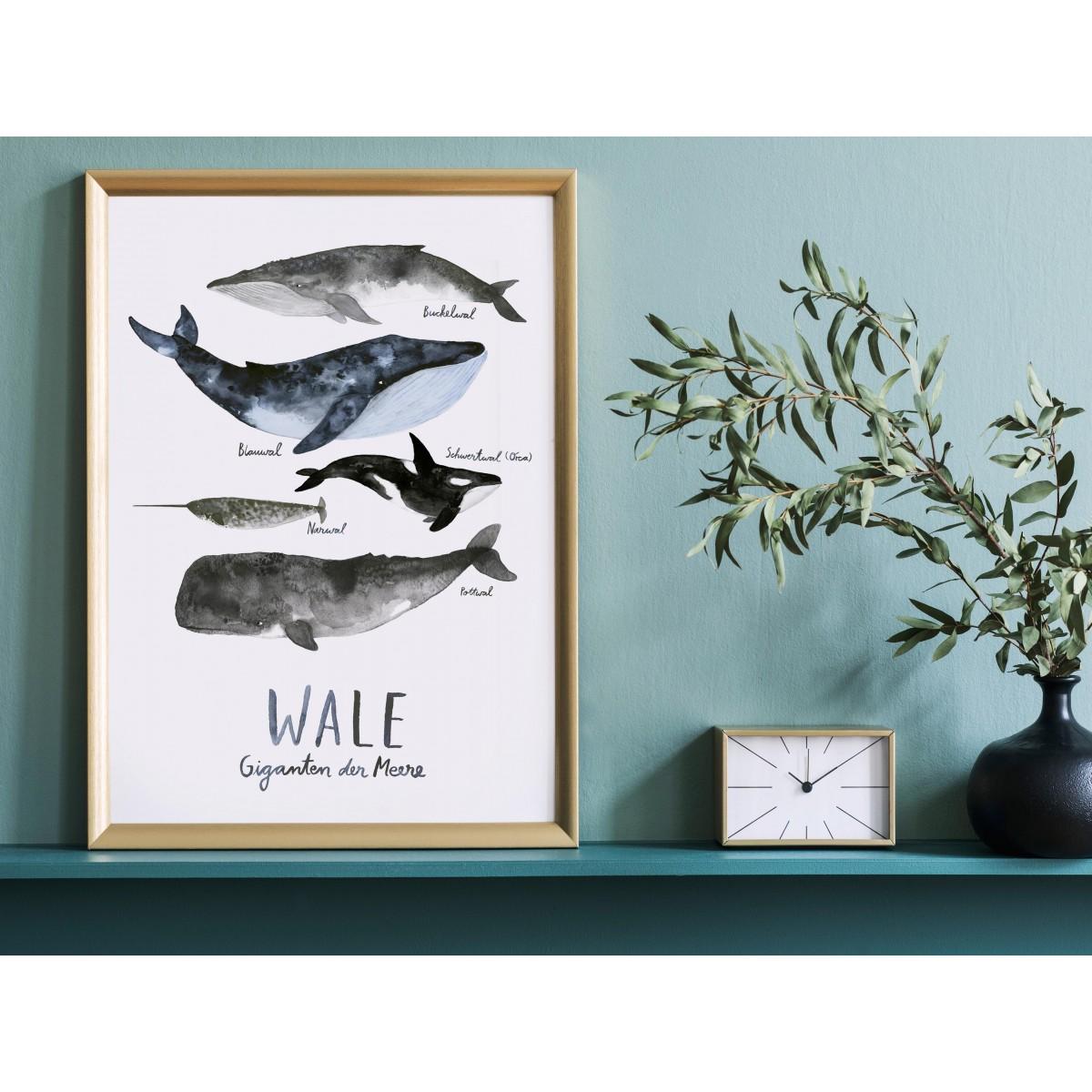 typealive / Print / Wale