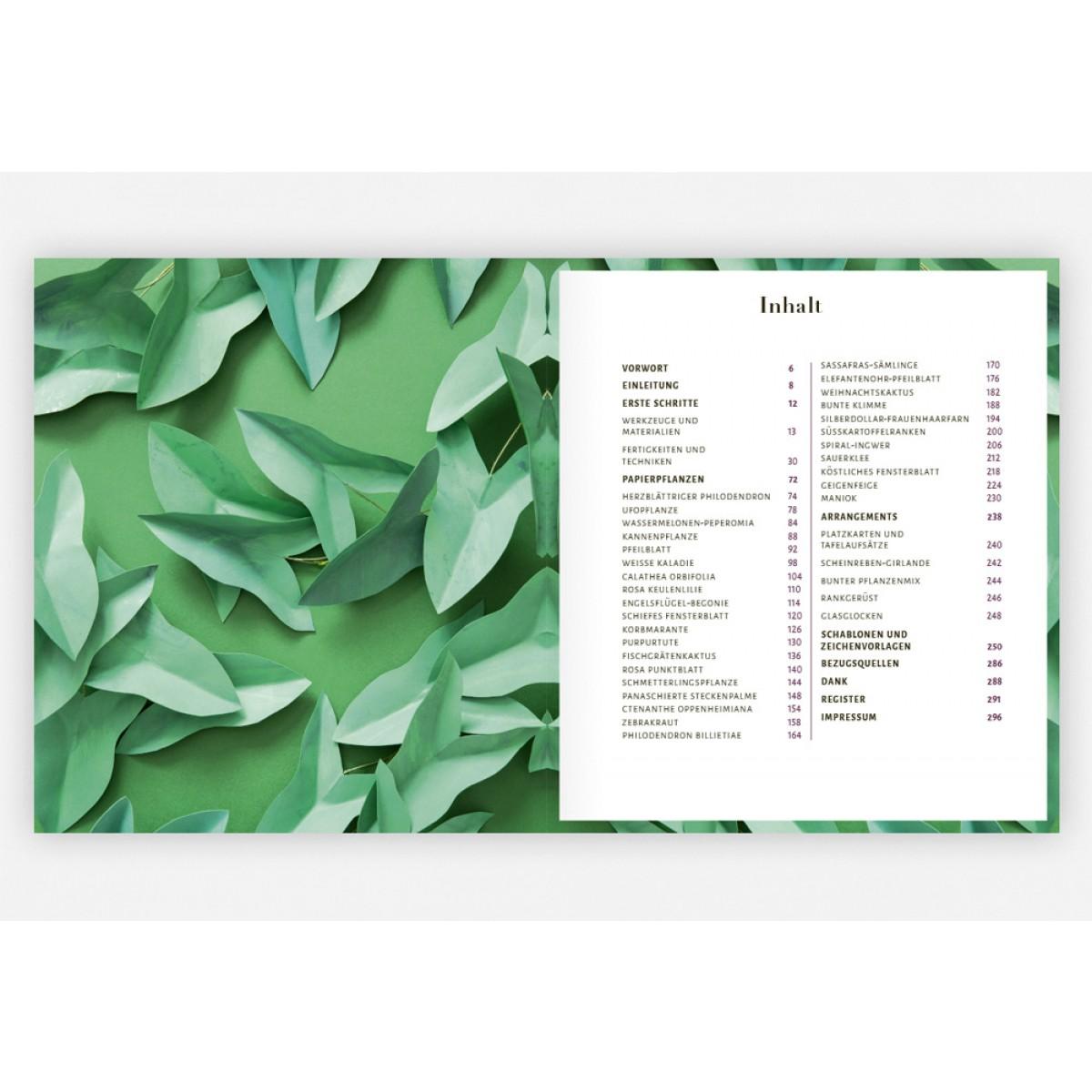 Corrie Beth Hogg Zimmerpflanzen aus der Papierwerkstatt Täuschend echt & pflegeleicht
