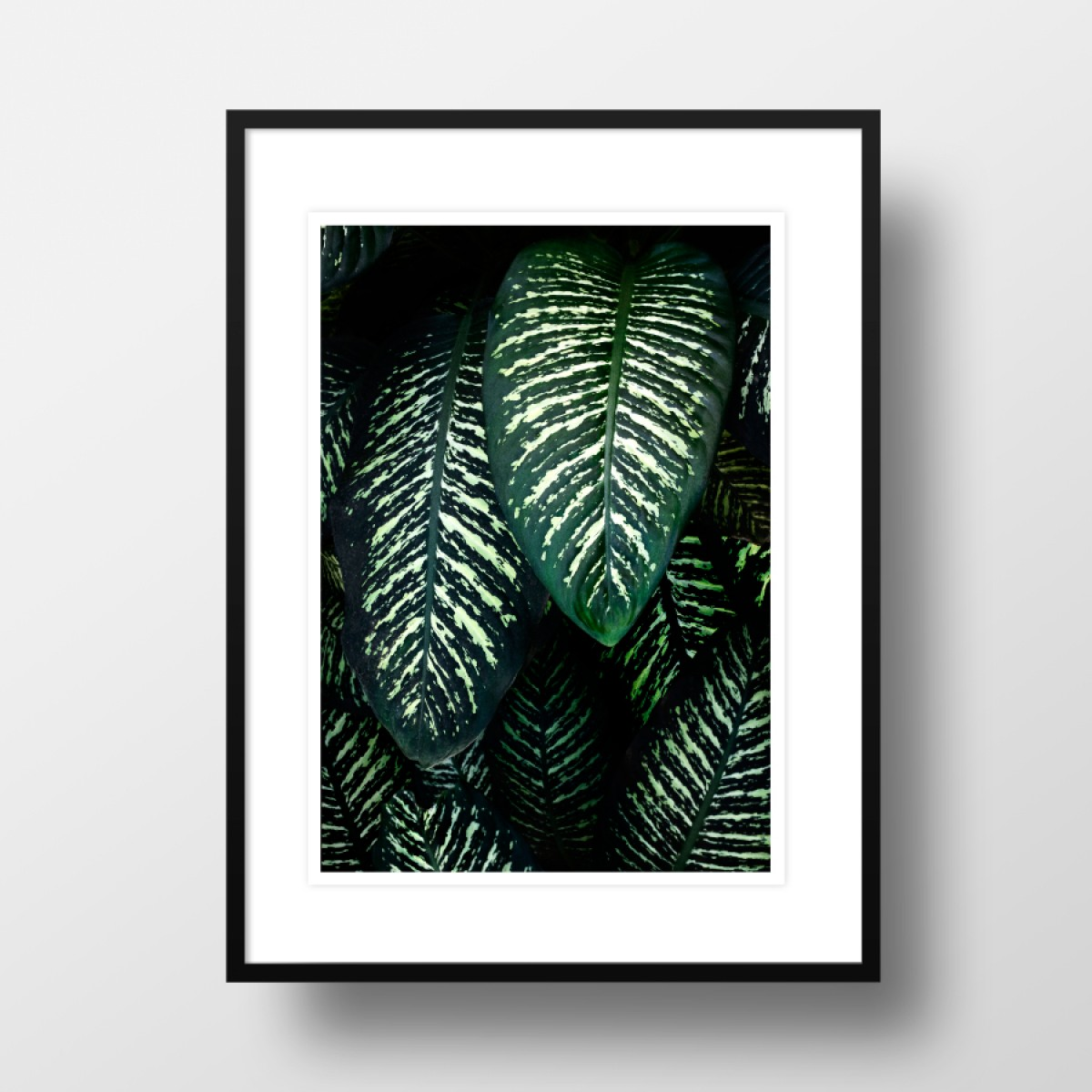 "Amy & Kurt Berlin A4 Artprint ""Jungle 1"""