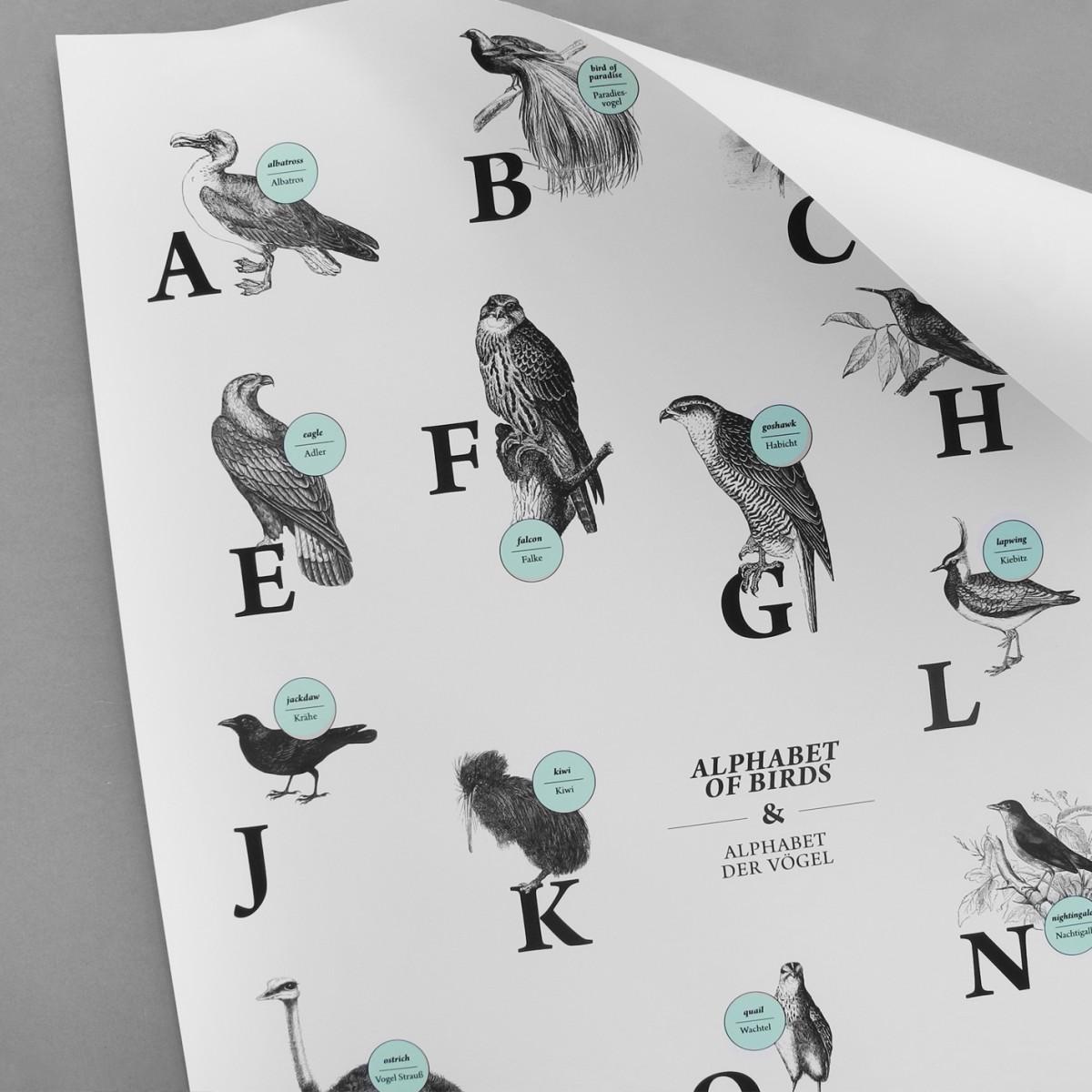 The True Type Poster, ABC der Vögel / alphabet of birds in Deutsch/Englisch, DIN A1, Plakat, Typografie, Design