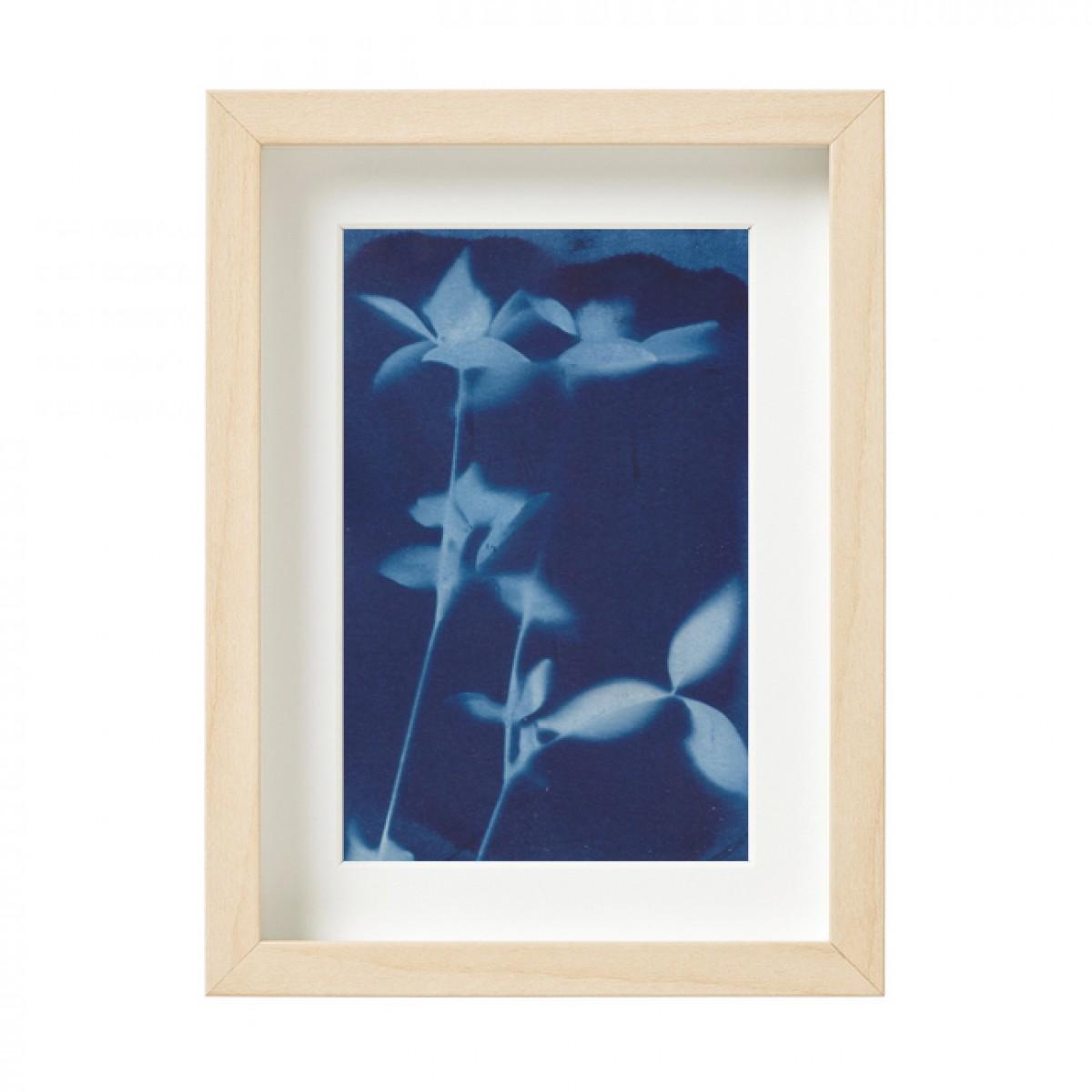 Anka Büchler, Floraler Blaudruck,Cyanotypie, Unikat, A6, gerahmt, Motiv 19