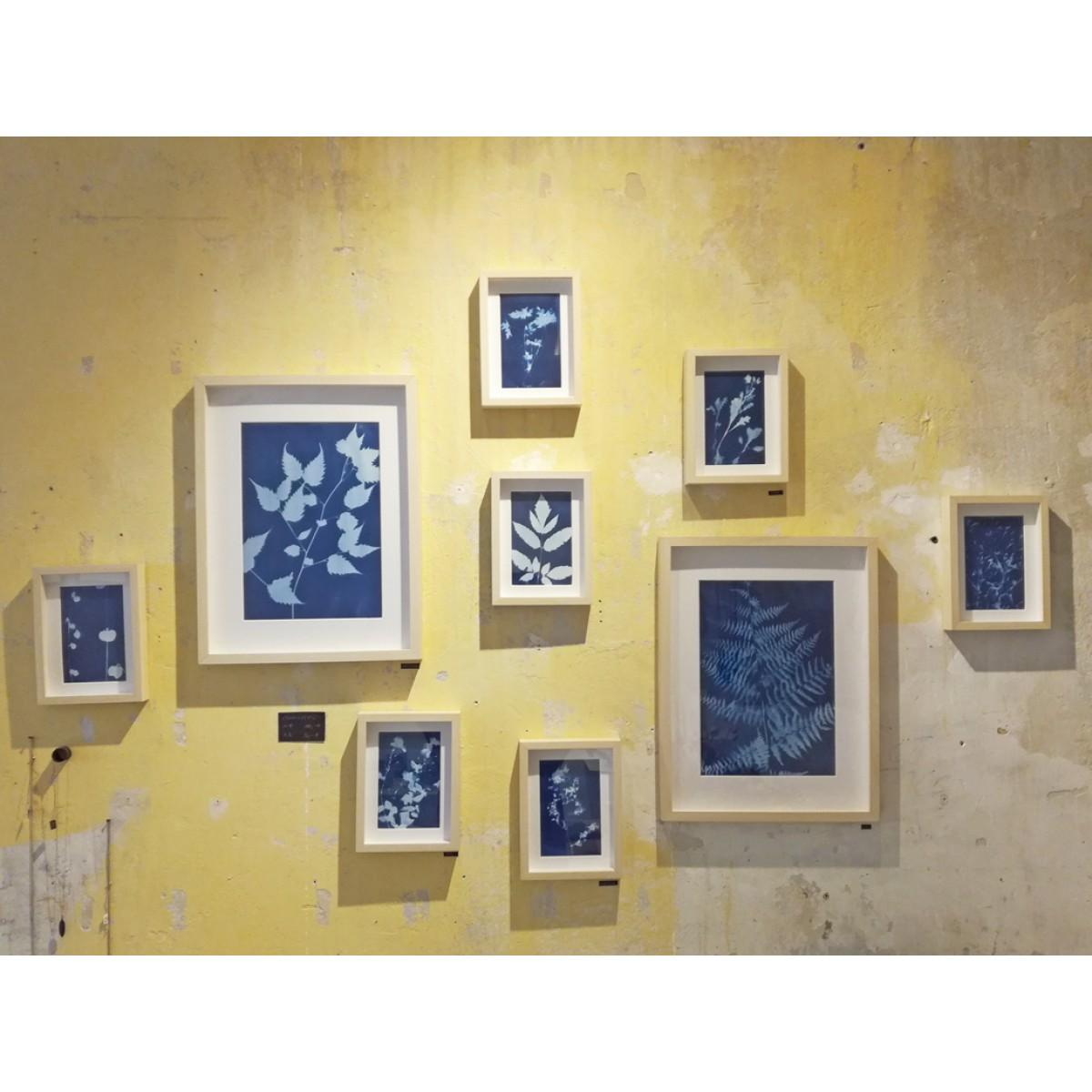 Anka Büchler, Floraler Blaudruck,Cyanotypie, Unikat, A6, Motiv 7