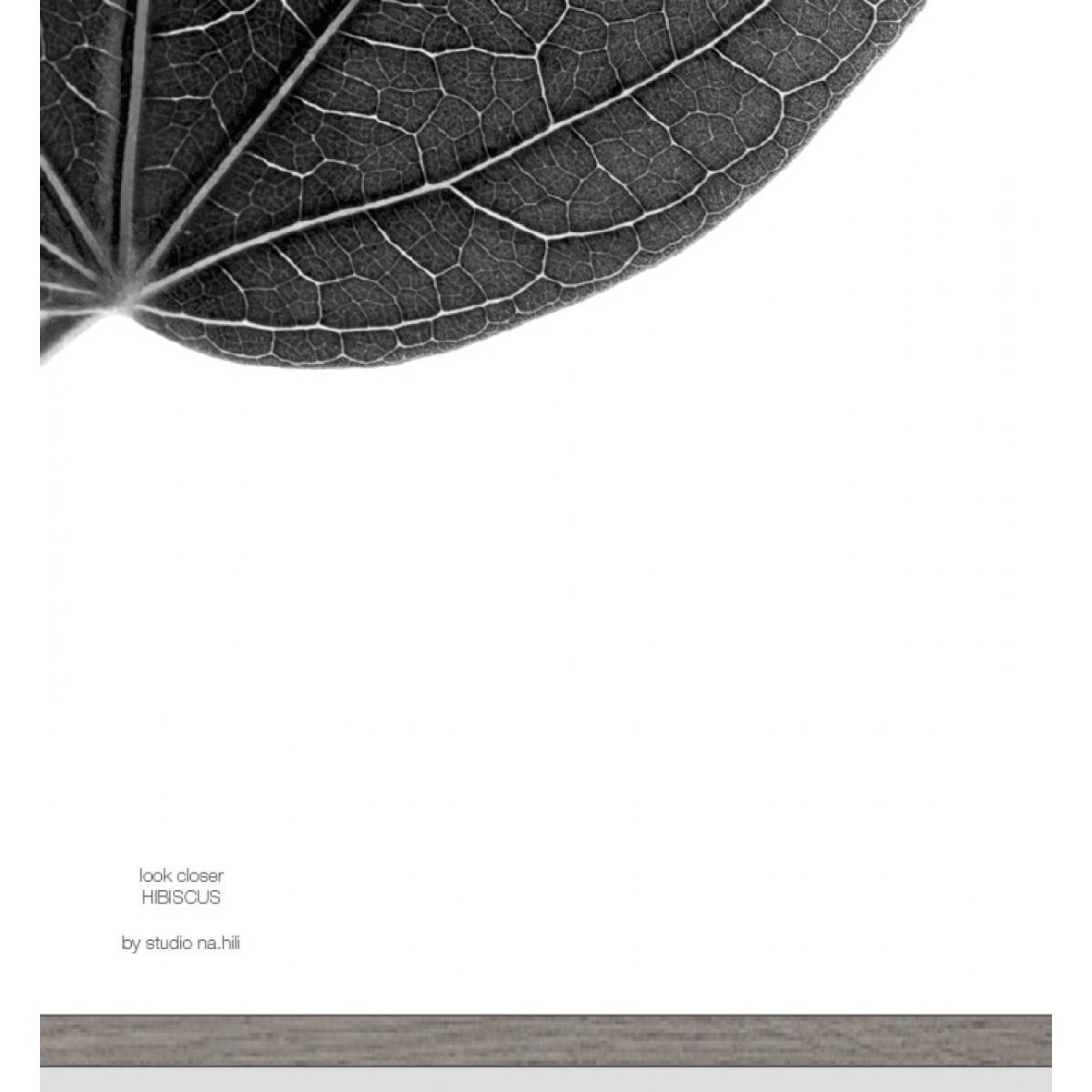 look closer HIBISCUS - black Artprint A3, 50x70, A1 Poster