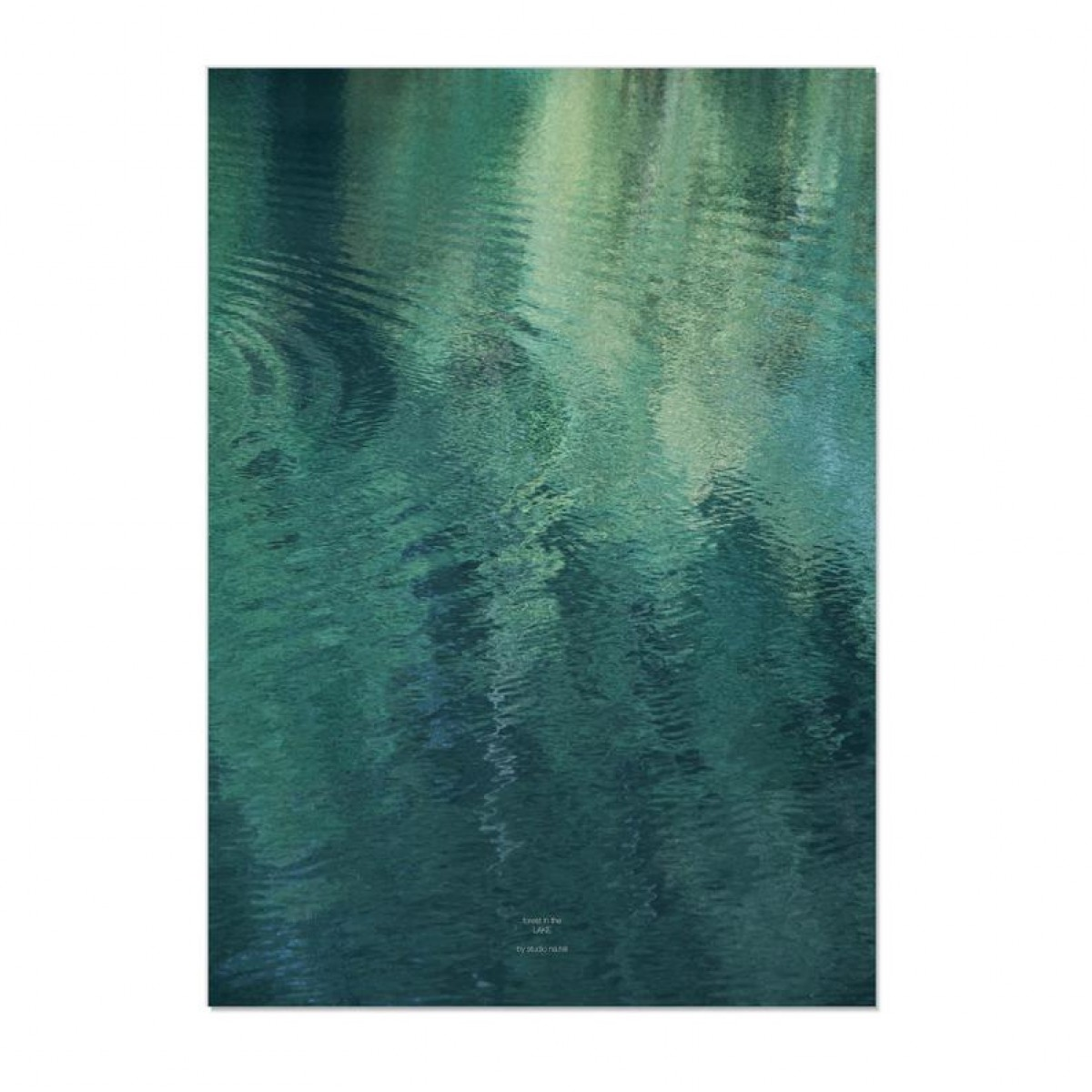 nahili forest in the LAKE - A3, 50x70 / A1 Artprint - Poster