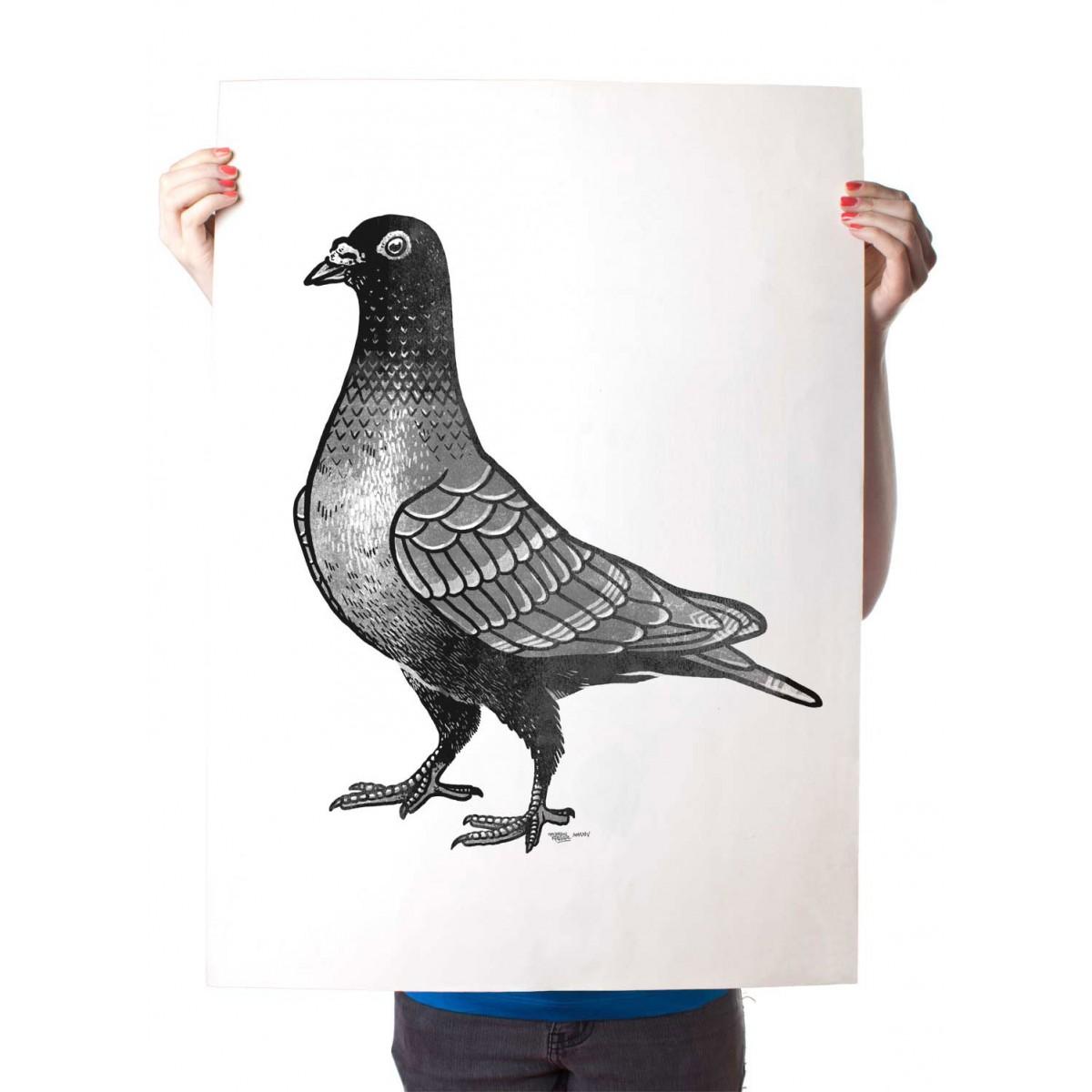 Martin Krusche – Poster »La Paloma« 50x70cm oder DINA3, Illustration