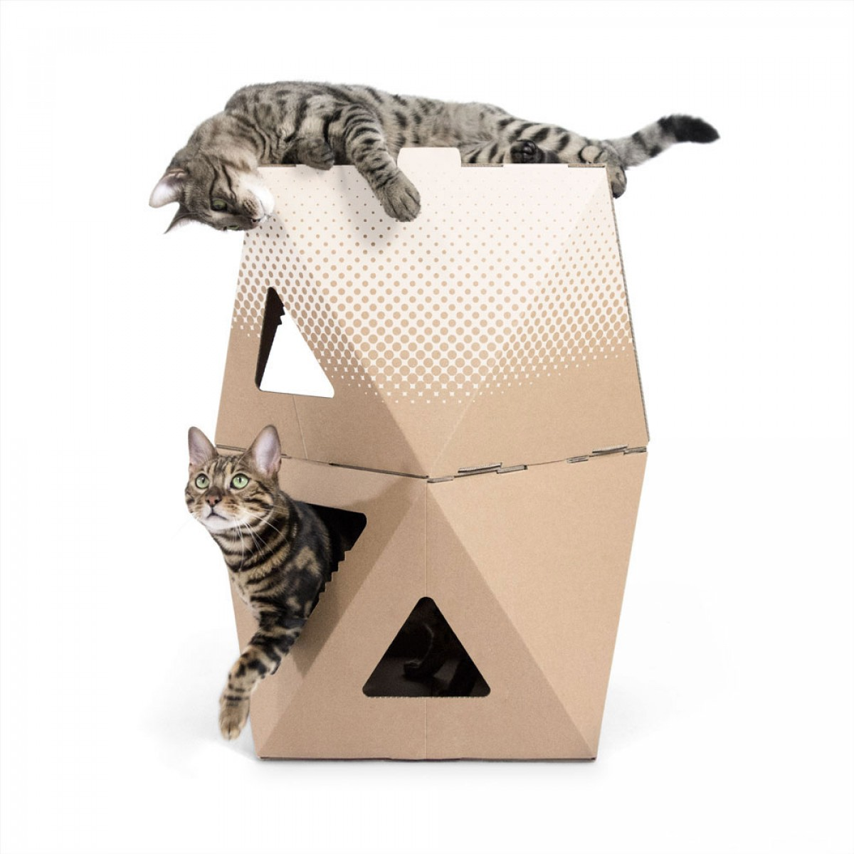 meezee Katzenkarton NOOK double - nature/dots white